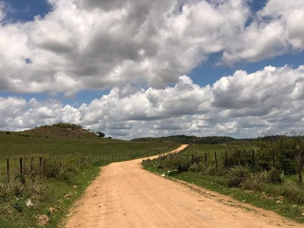 Governador autoriza implantação de rodovia que ligará Murici a Capela na segunda (2)