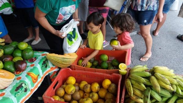 Agricultores de AL realizam mais uma edição da Feira Orgânica na Praia no domingo (12)