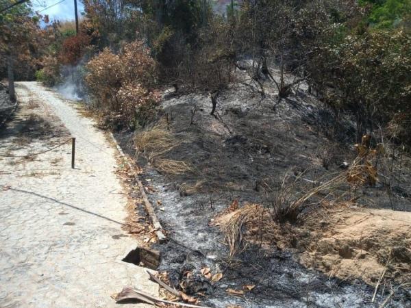 Equipe do Corpo de Bombeiros foi acionada na manhã desse domingo para conter novo incêndio FOTO: cortesia
